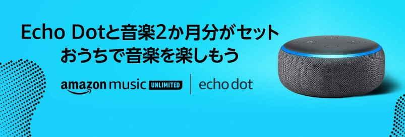 2020.4.21~終了日未定【Echo Dot+個人プラン2ヶ月が2,980円】
